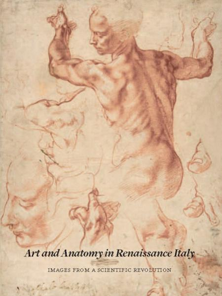 книга Art and Anatomy in Renaissance Italy: Images from a Scientific Revolution, автор: Domenico Laurenza